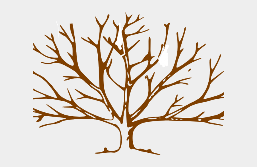 redwood tree clipart, Cartoons - Brown Tree Cliparts - Tree Trunk Clipart