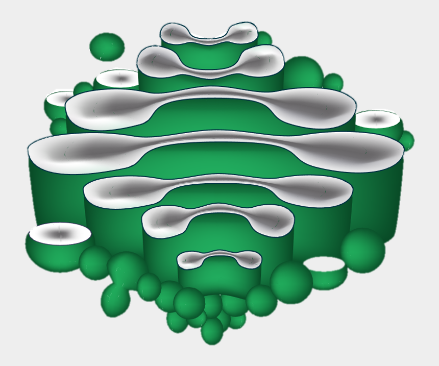 cells clipart, Cartoons - Membrane-bound Sacs For The Proteins To Travel Through - Golgi Body Diagram Labeled