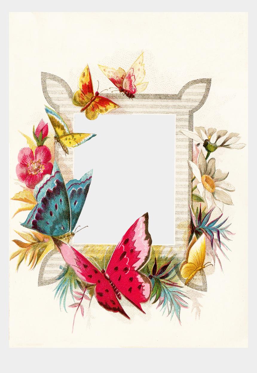 butterflies clipart border, Cartoons - Clipart Flowers And Butterflies Png - Flower And Butterfly Border