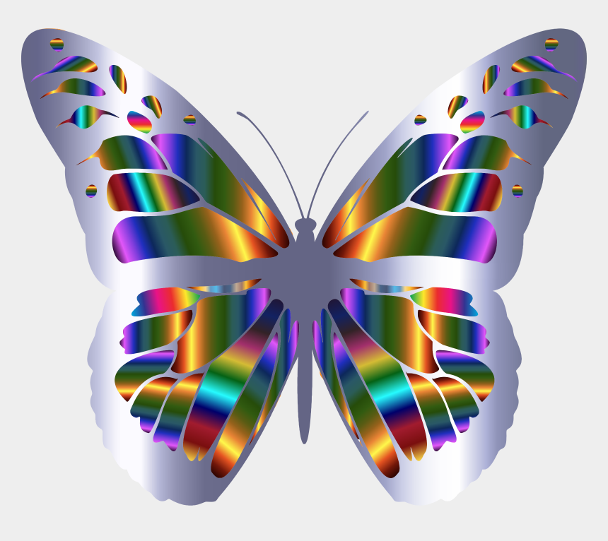 butterflies clipart border, Cartoons - Monarch Butterflies Png - Butterfly Frames And Borders