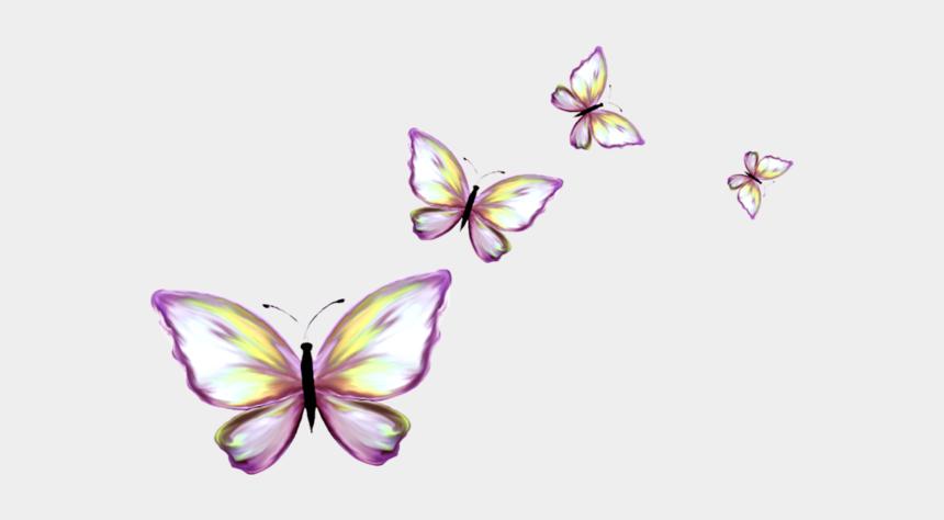 butterflies clipart border, Cartoons - Papillons Butterfly Art, Monarch Butterfly, Butterflies, - Papillon Clipart