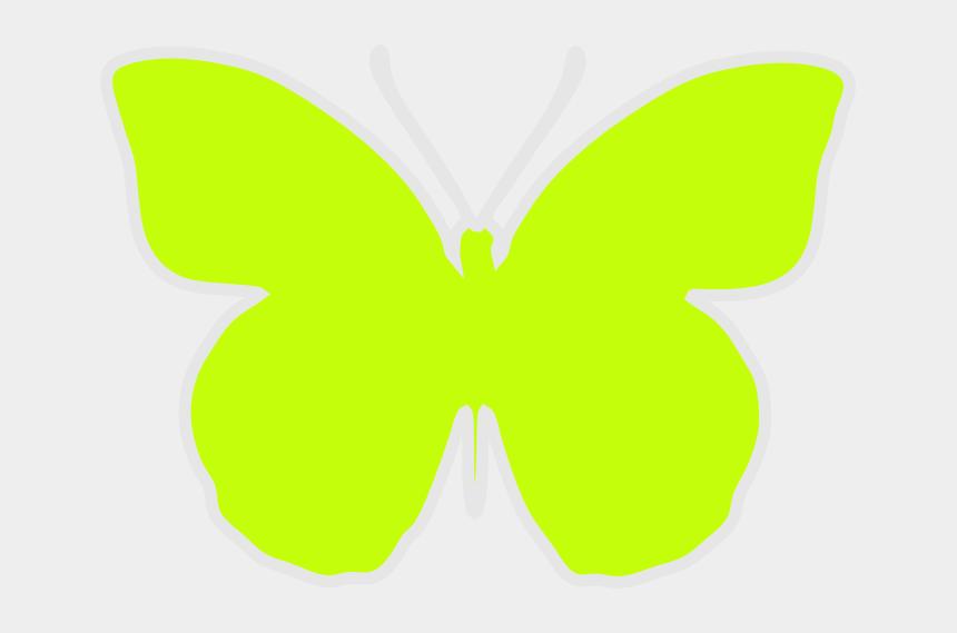 butterflies clipart border, Cartoons - Free Green Scrap Butterfly Png - Papilio