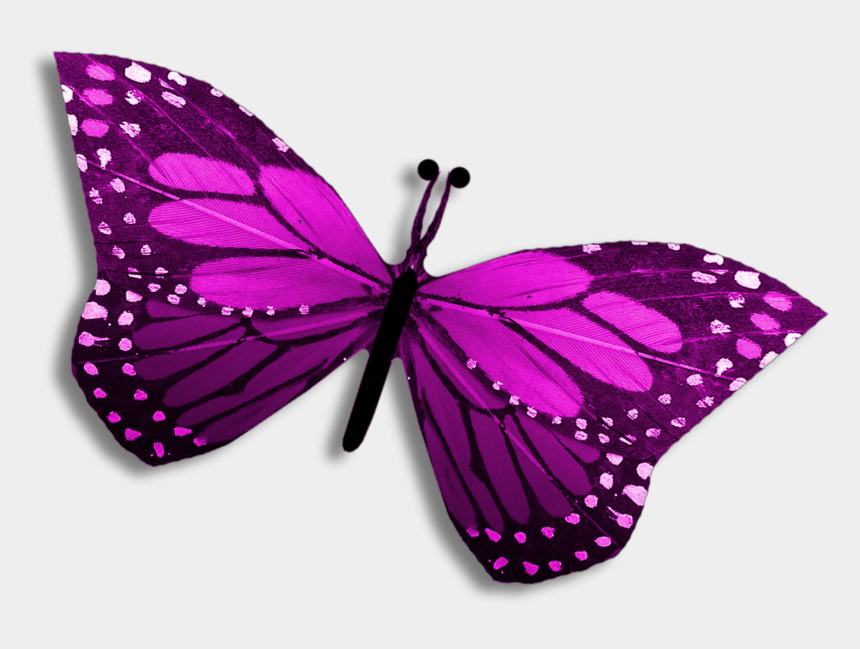editing clipart, Cartoons - Purple Clipart Editing Picsart Butterfly Pretty Clipart - Swallowtail Butterfly