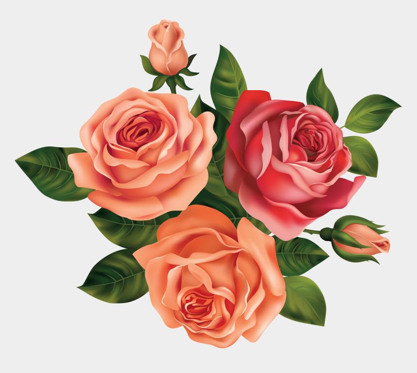 rose clipart png, Cartoons - Image - Rose Flowers Clip Art