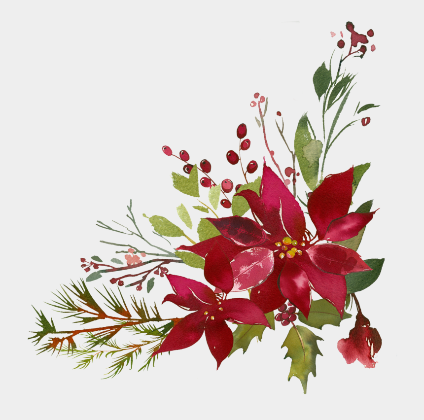 Red Poinsettia* Watercolor Floral Clipart Poinsettia Christmas Clipart PNG Floral Clipart Seamless Pattern Elements and Arrangements #O15