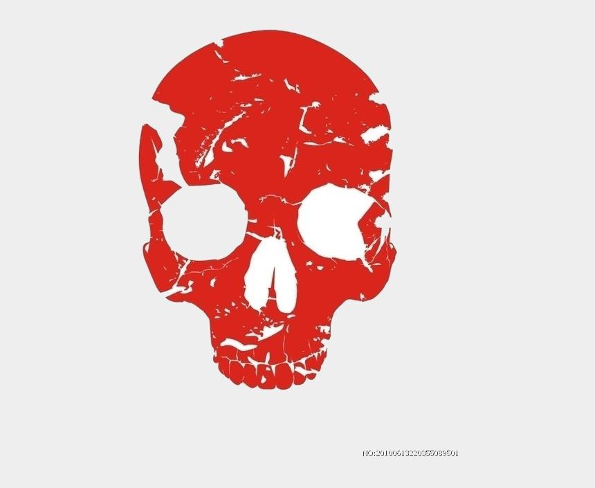 human bone clipart, Cartoons - Bone Human Skull Skeleton Free Transparent Image Hq - Transparent Skull Logo