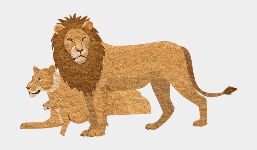 cougar head clipart, Cartoons - Lion Pixabay Animal Lioness Vintage Cougar - Lion King 2019 Bags