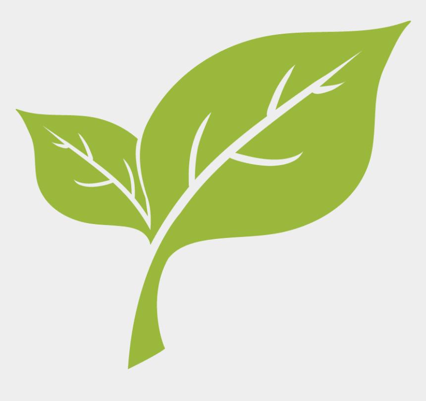 rake leaves clipart, Cartoons - Leaf Removal - Light Green Leaf Png
