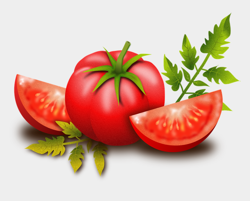 power plants clipart, Cartoons - Tomato, Fruits, Vegetables, Plants, Food - Transparent Background Tomato Png