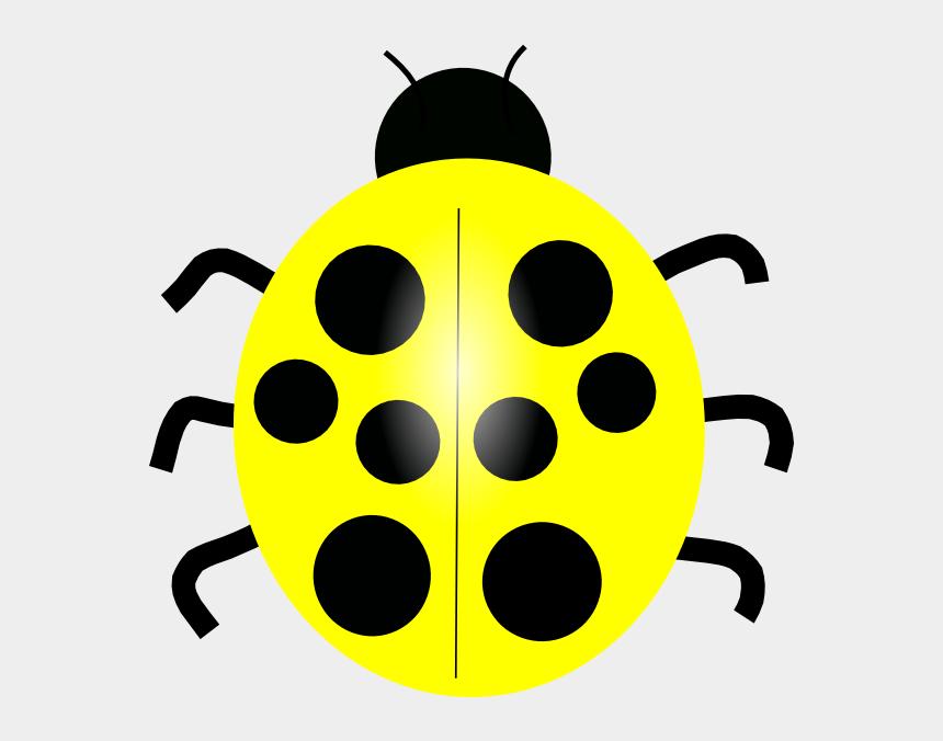bug clip art, Cartoons - Lady Bug Png - Different Color Ladybug Clipart