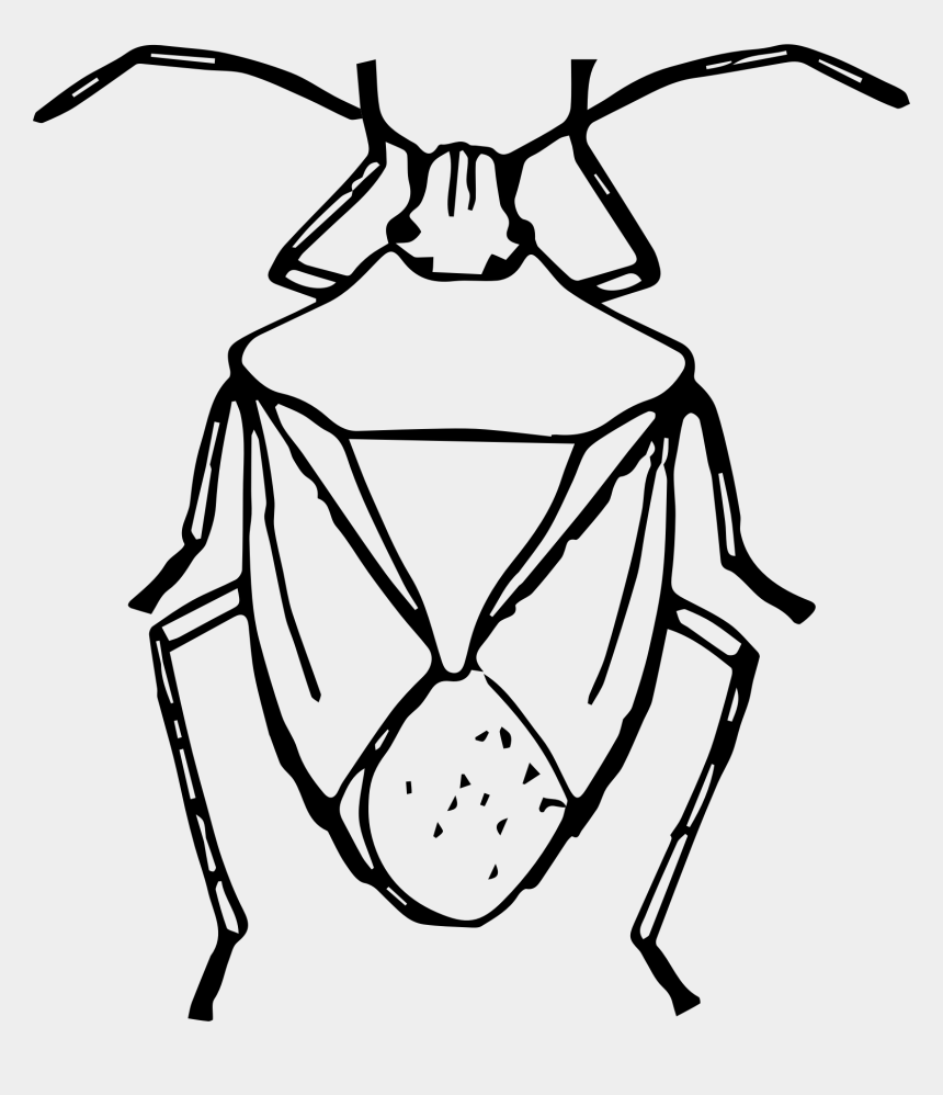 bug clip art, Cartoons - Insect Clipart Easy - Easy To Draw Stink Bug