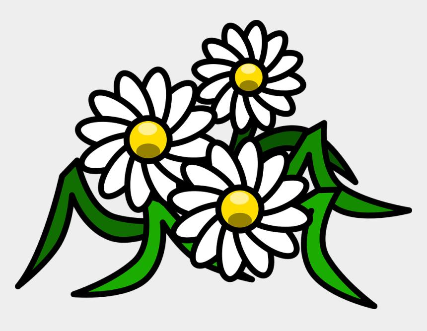 Flowers Cartoon Png - Daisy Clipart, Cliparts & Cartoons ...