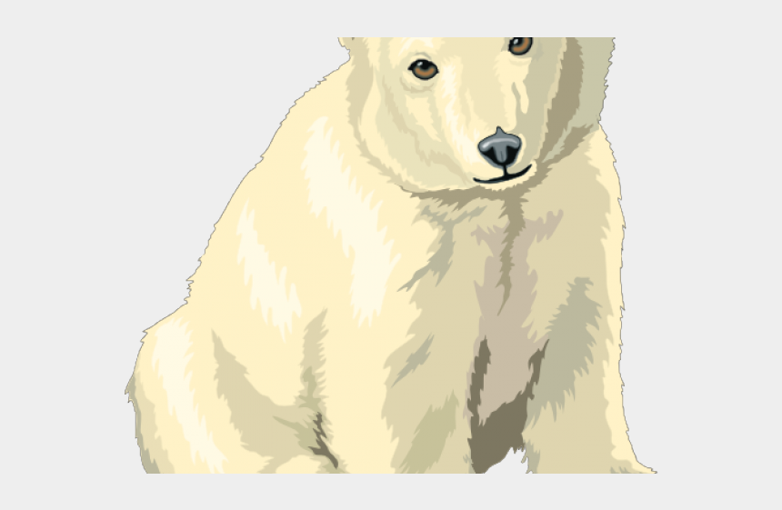 polar bear clip art, Cartoons - Polar Bear Clipart Public Domain - Clipart Polar Bear Cub