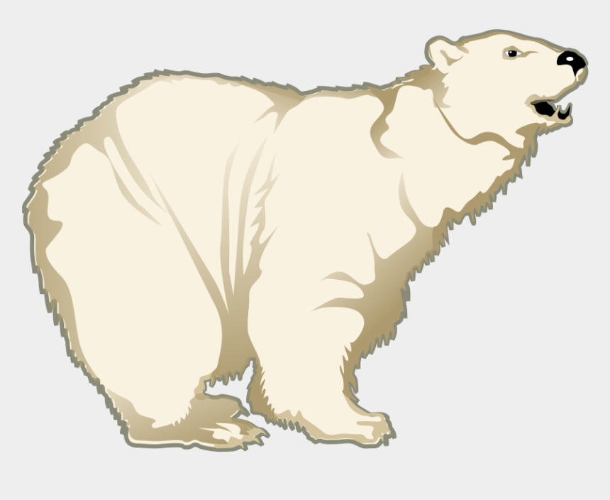 polar bear clip art, Cartoons - Polar Bear Clipart - Cartoon Polar Bear Transparent Background