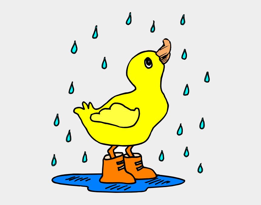 rain clip art, Cartoons - Duck In The Rain Clipart