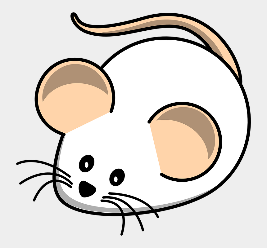 rat clip art, Cartoons - White Field Mouse Clip Art At Clker - Black And White Mouse Clipart