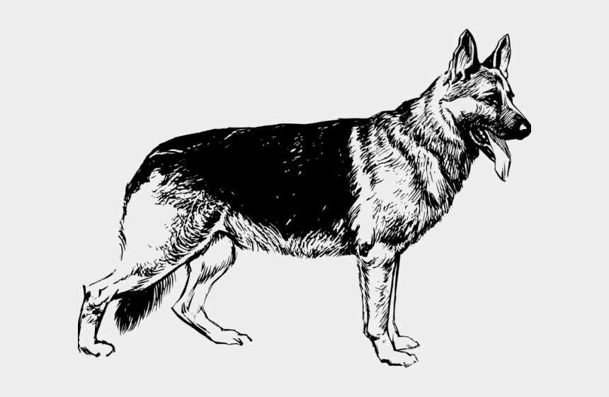 christmas shepherd clipart, Cartoons - German Shepherd Clipart Free Clip Art Stock Illustrations - German Shepherd Black And White