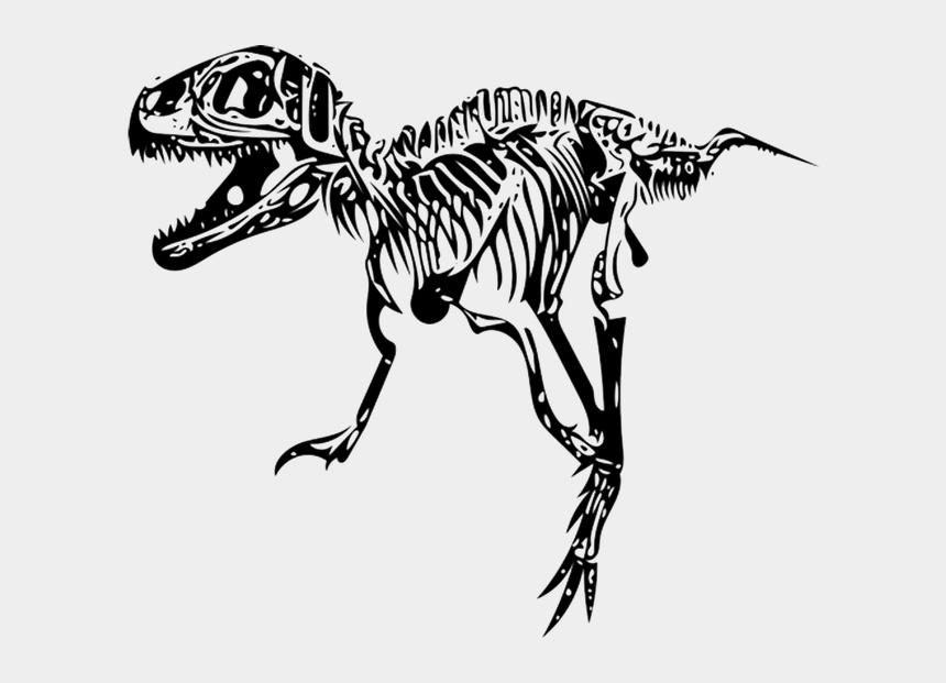 tyrannosaurus rex clipart, Cartoons - Tyrannosaurus, T-rex, Fossil - Skeleton T Rex Png