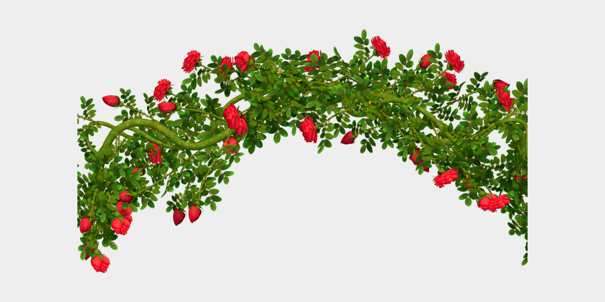 be kind clipart, Cartoons - Shrub Bushes Clipart Kind Plant - Transparent Background Rose Bush Png