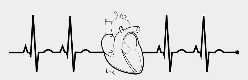 heart organ clipart, Cartoons - Ekg Drawing Organ - Ekg Clipart