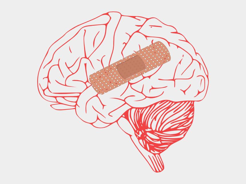 head injury clipart, Cartoons - Brain Injury Clip Art - Brain Clip Art