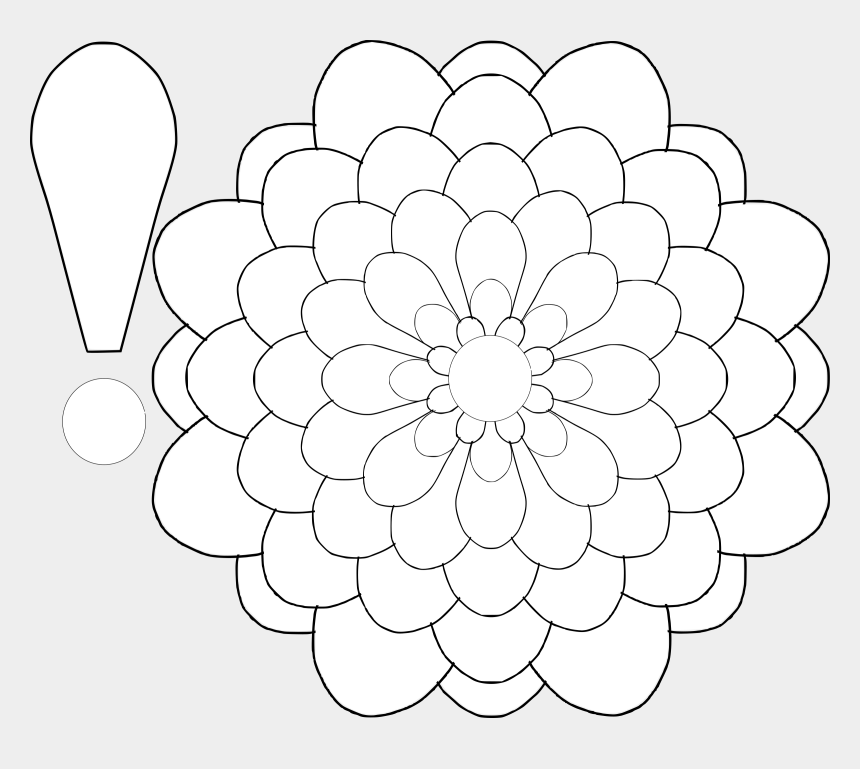 carnations clipart, Cartoons - Petal Drawing Carnation - Flower With A Lot Of Petals Drawing