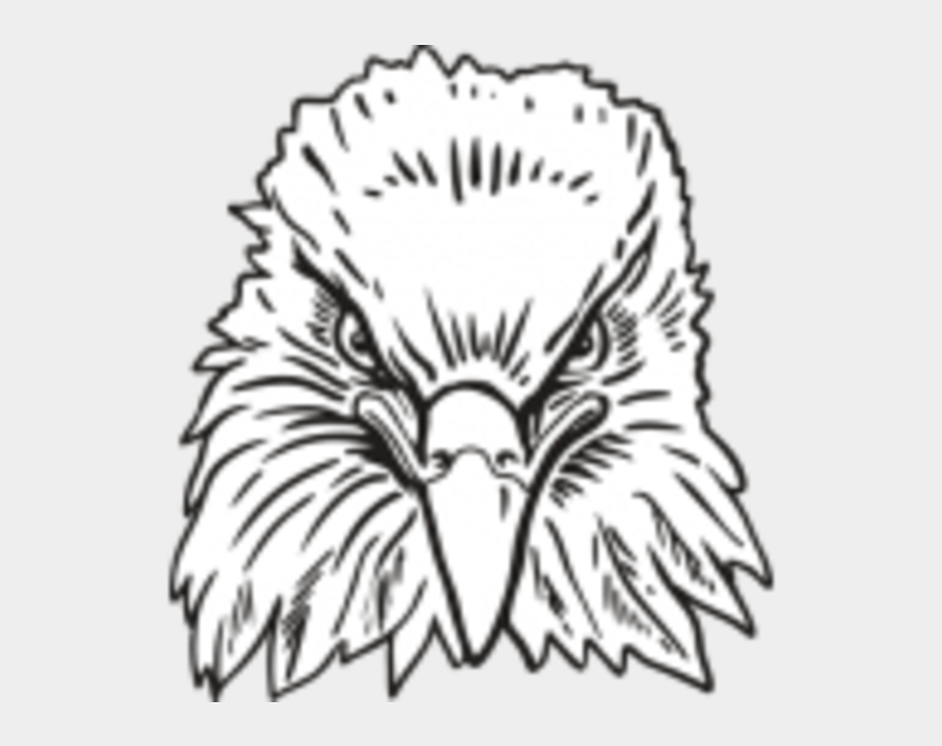eagle head clipart black and white, Cartoons - Eagle Head Front View