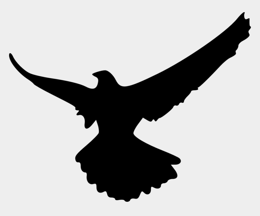 eagle head clipart black and white, Cartoons - Eagle, Bird, Animal, Flying, Silhouette - Shadow Of An Eagle
