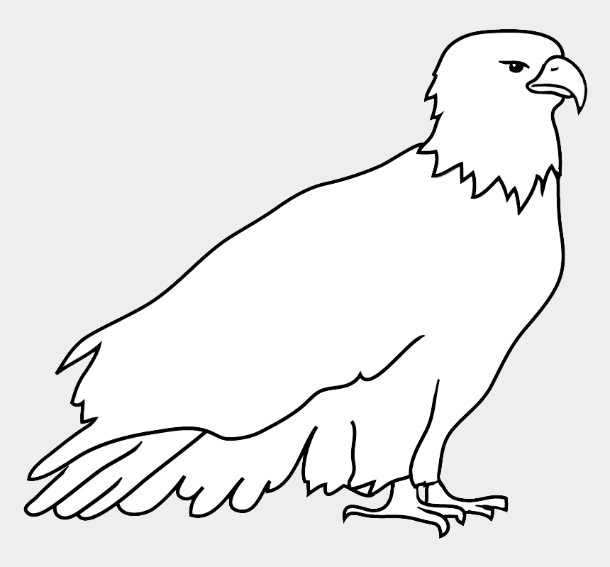 eagle head clipart black and white, Cartoons - Resting Bald Eagle Drawing - Outline Of An Eagle