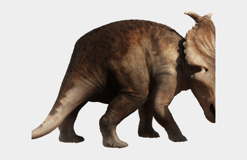 triceratops clipart, Cartoons - Triceratops Clipart Transparent - Walking With Dinosaurs Pachyrhinosaurus