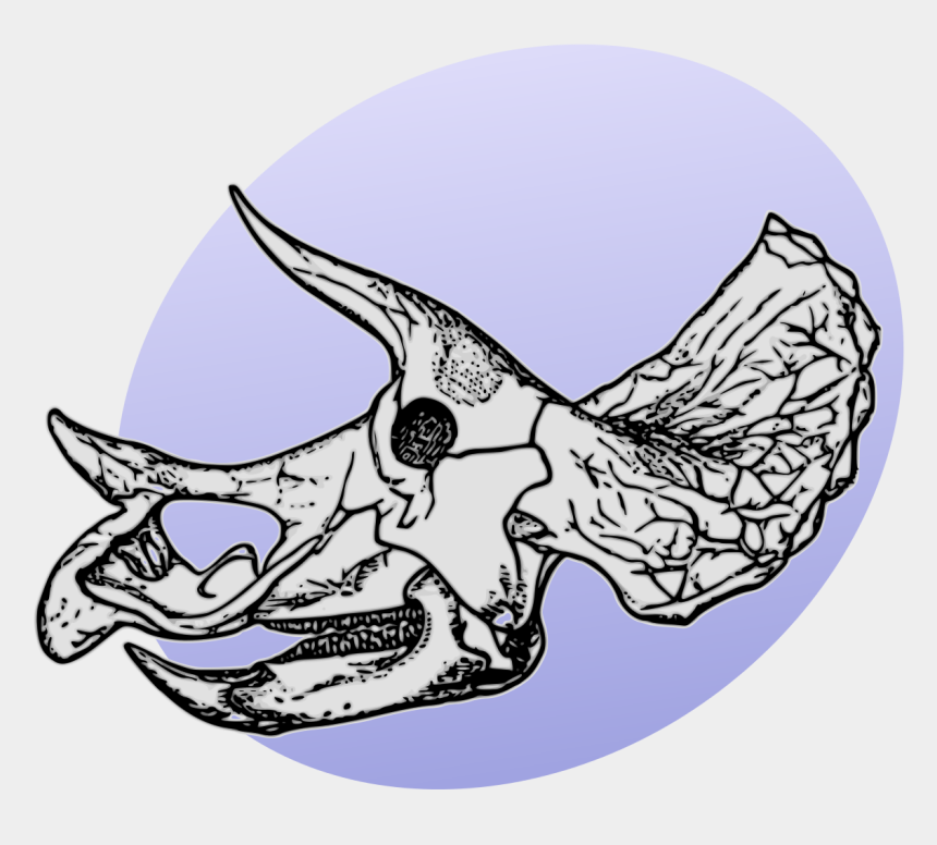 triceratops clipart, Cartoons - Dinosaur Egg Png - Triceratops Skeleton Drawing Head