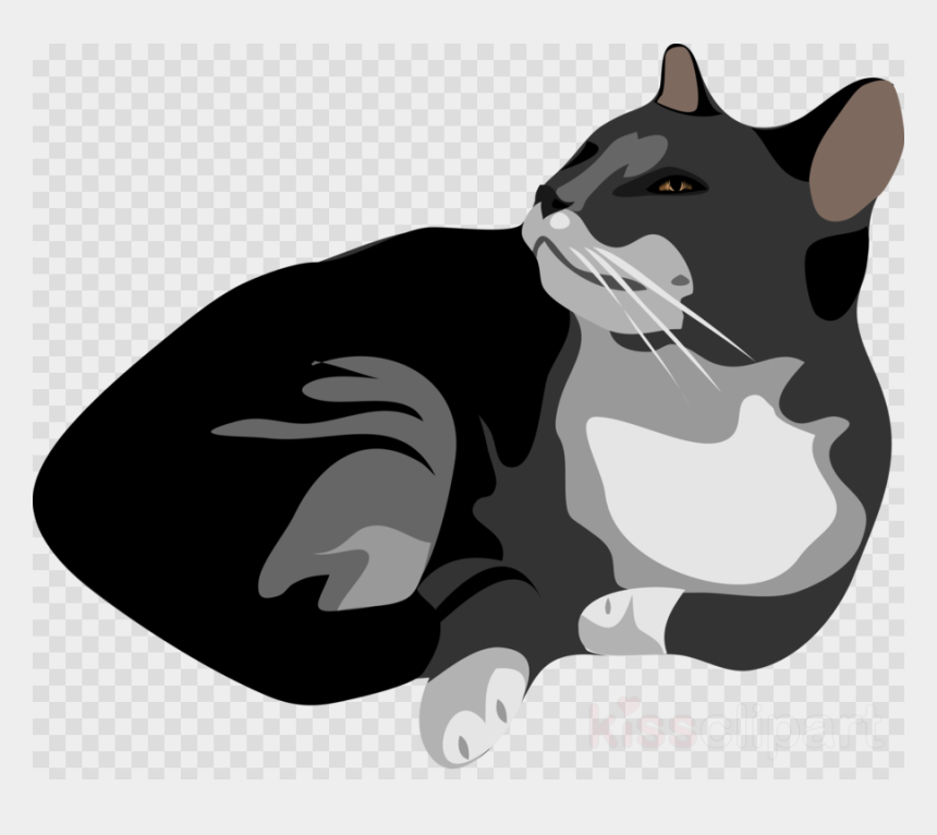 Download Grey And White Cat Ornament Clipart Kitten Transparent Background Cat Png Clipart Cliparts Cartoons Jing Fm