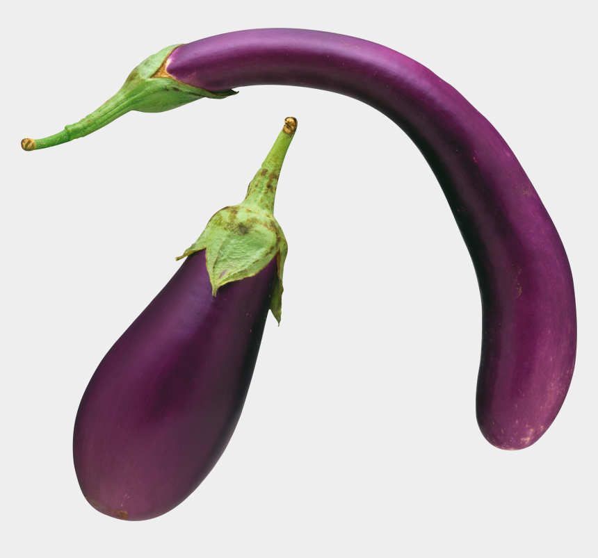 vegetable clipart, Cartoons - Long Eggplant Png