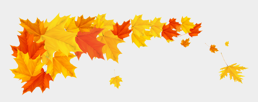 autumn clip art, Cartoons - Leaf Clipart, High Quality Images, Autumn Leaves, Clip - Transparent Fall Leaf Border
