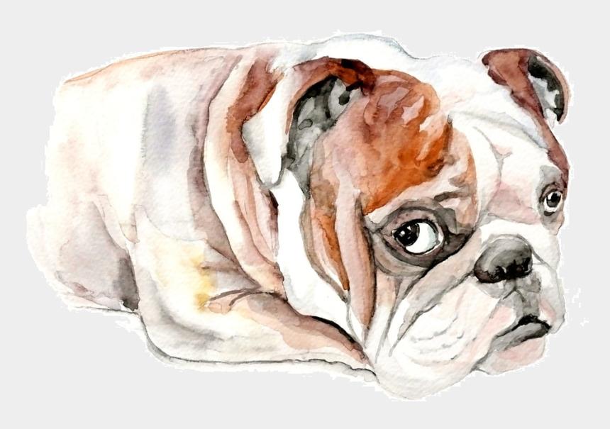 bulldog clip art, Cartoons - French Bulldog Clip Art - Bulldog