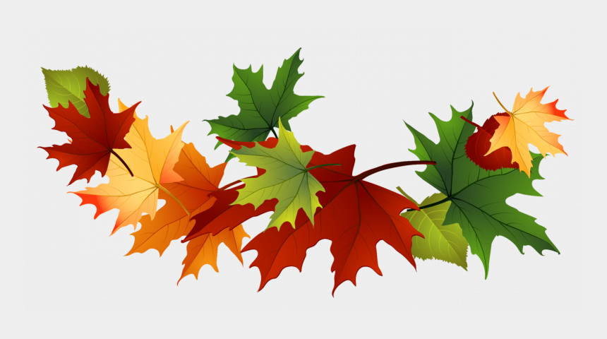 fall leaf clip art, Cartoons - Falling Maple Leaves Free