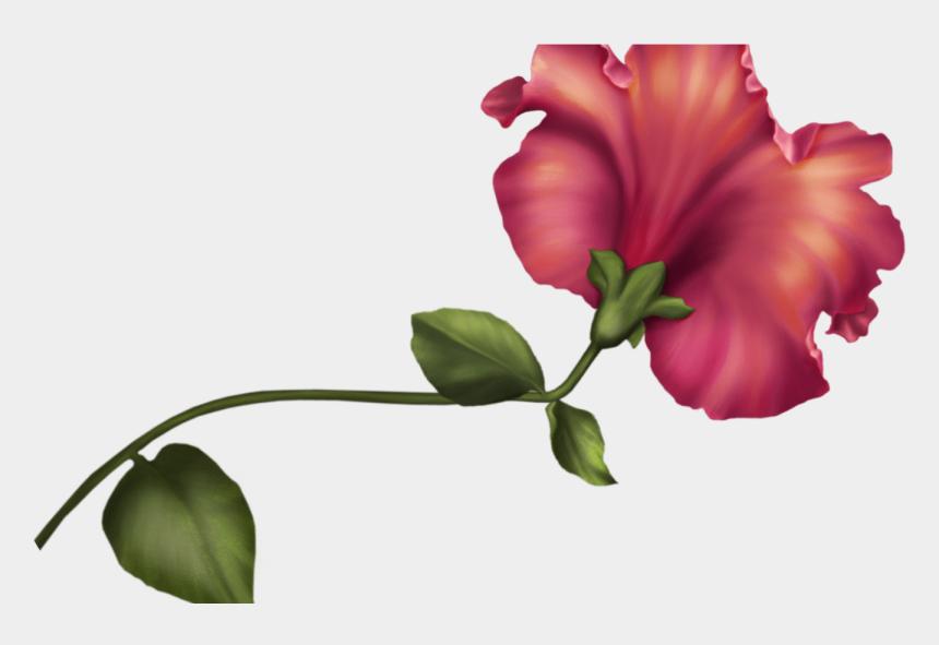 vintage clipart, Cartoons - Vintage Flower Png Clip Art Best Web Clipart - Watercolor Border Png Flowers
