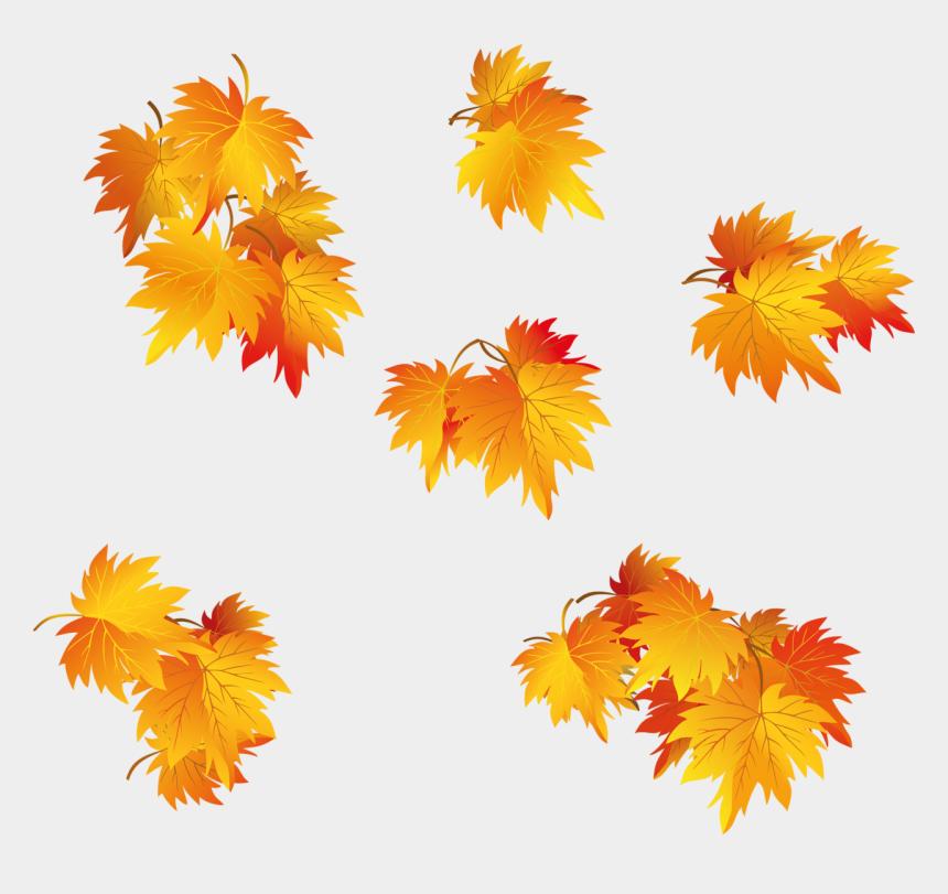fall leaf clip art, Cartoons - Fall Leaf Vector Png - Осенние Листья На Прозрачном Фоне