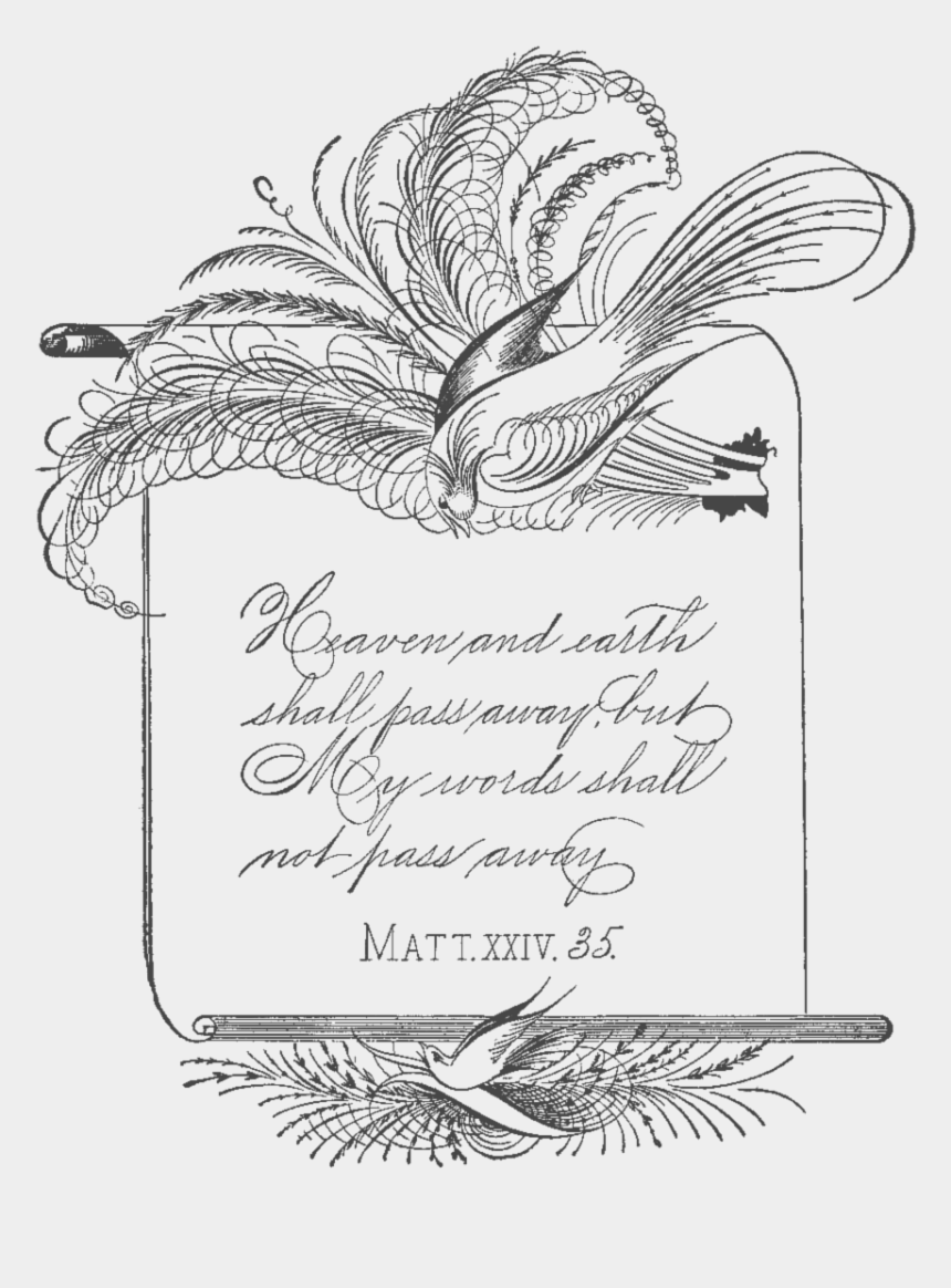 vintage clipart, Cartoons - Free Vintage Clipart Spencerian Calligraphy Birds - Calligraphy
