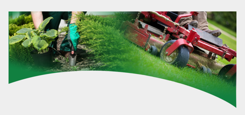 riding mower clipart, Cartoons - Landscaping Plants Png - Lawn