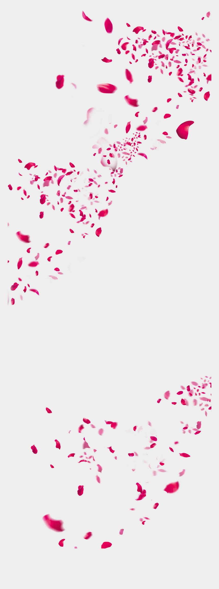 fall flowers clipart, Cartoons - Flower Wedding,rose Peach Petal Petals,festival,flowers, - Falling Petals Watercolor Png