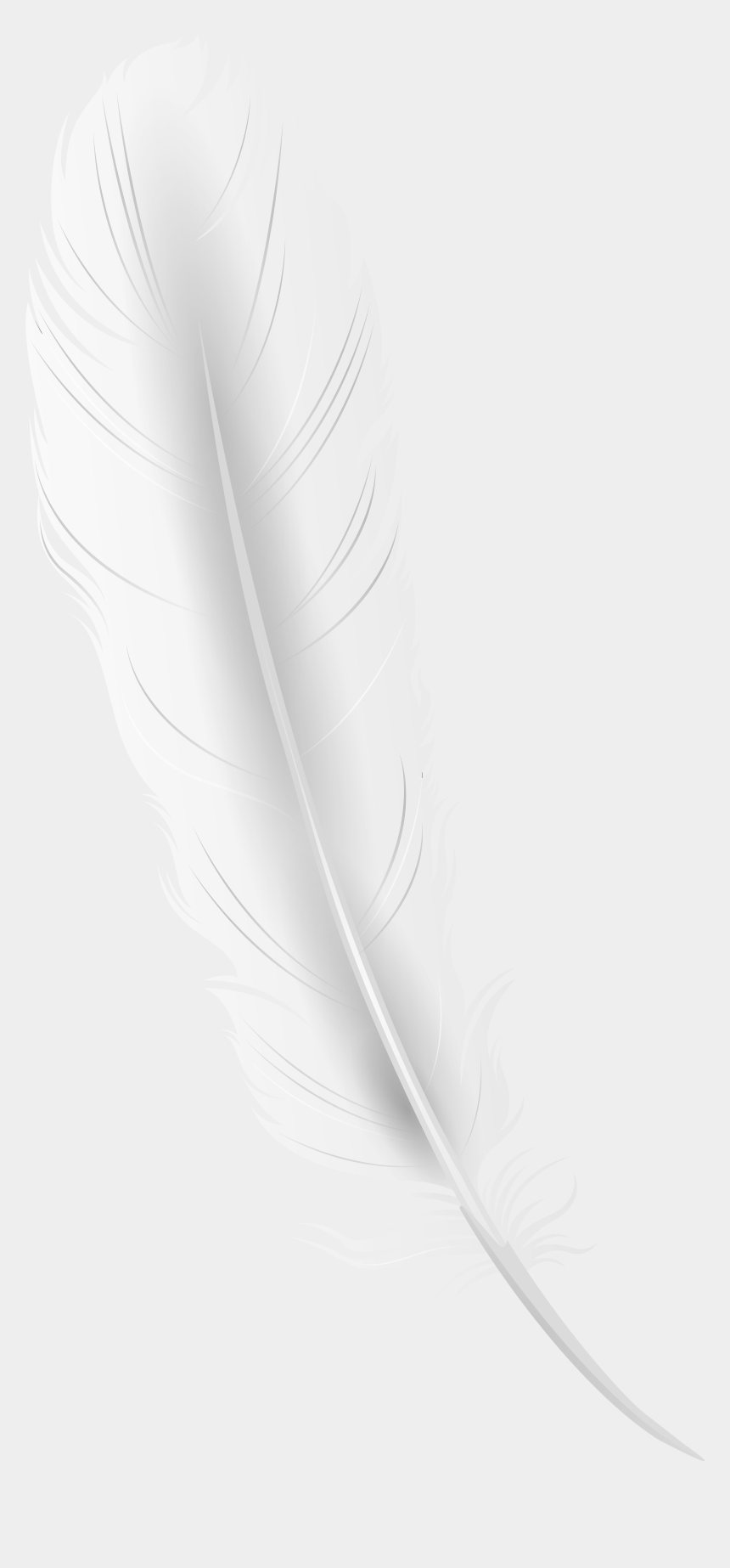 quill pen clipart, Cartoons - White Feather Png - White Feather Png Transparent