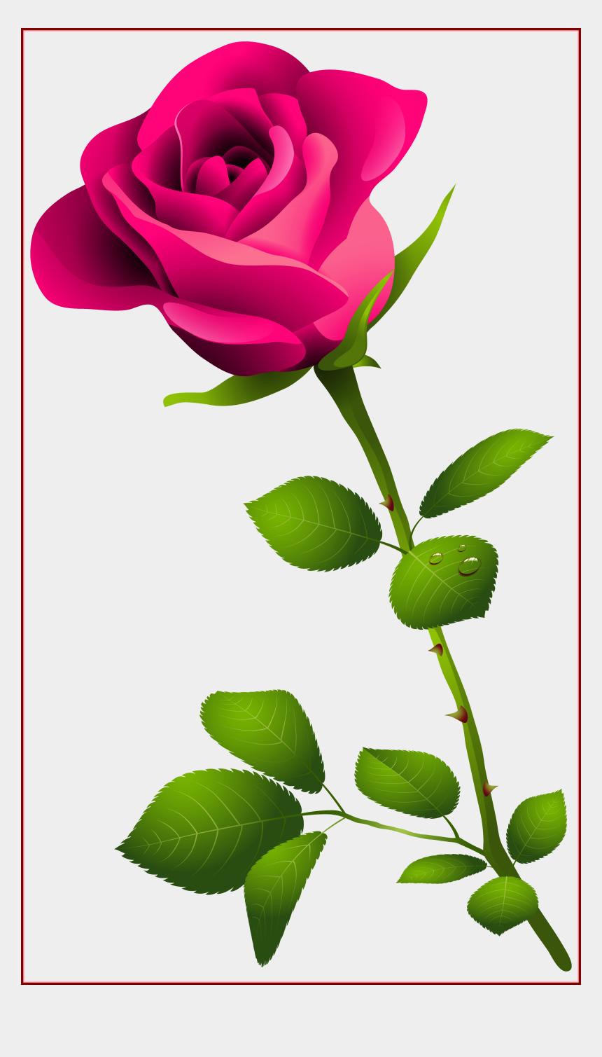 pink roses clipart, Cartoons - Rose Flower Rose Flower Images P Amazing Pink Rose - Long Stem Pink Rose