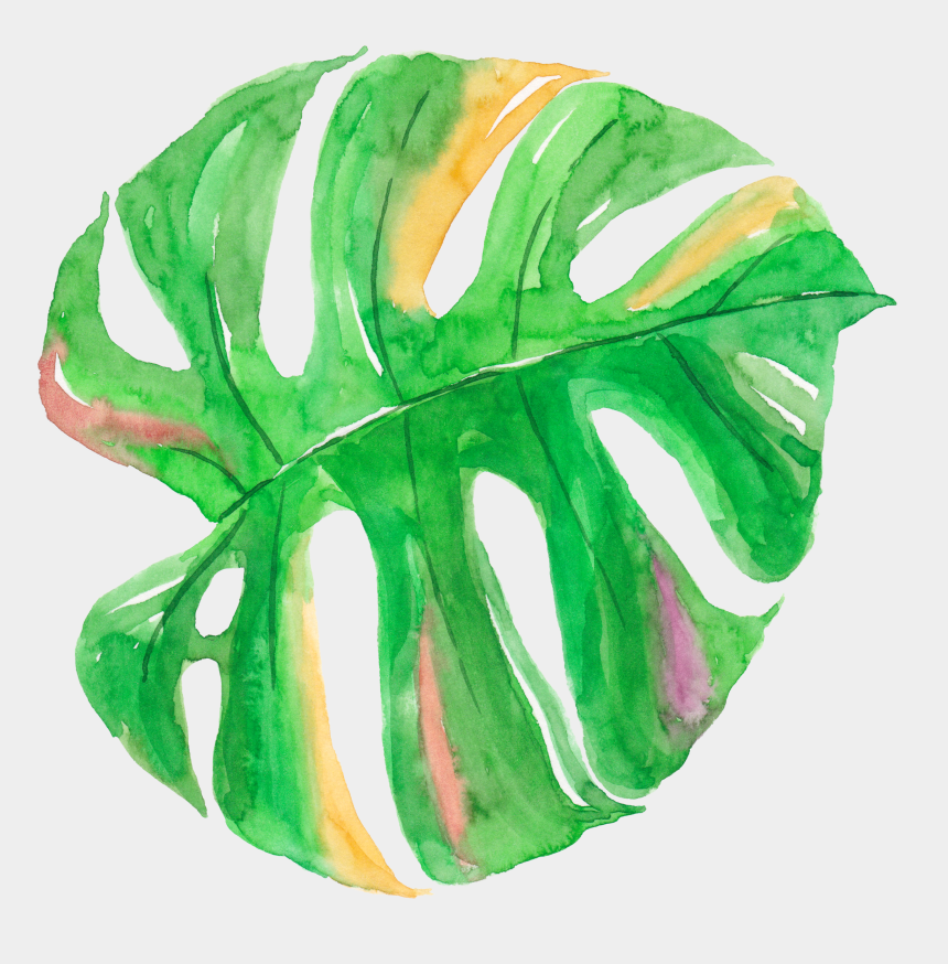 tropical leaf clipart, Cartoons - Leaf Watercolor Painting Canvas - Watercolor Tropical Leaves Png