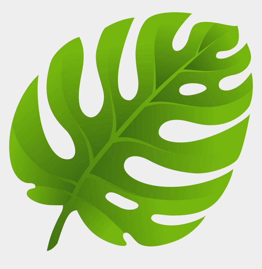 Tropical Leaf Stencil Cliparts Cartoons Jing Fm