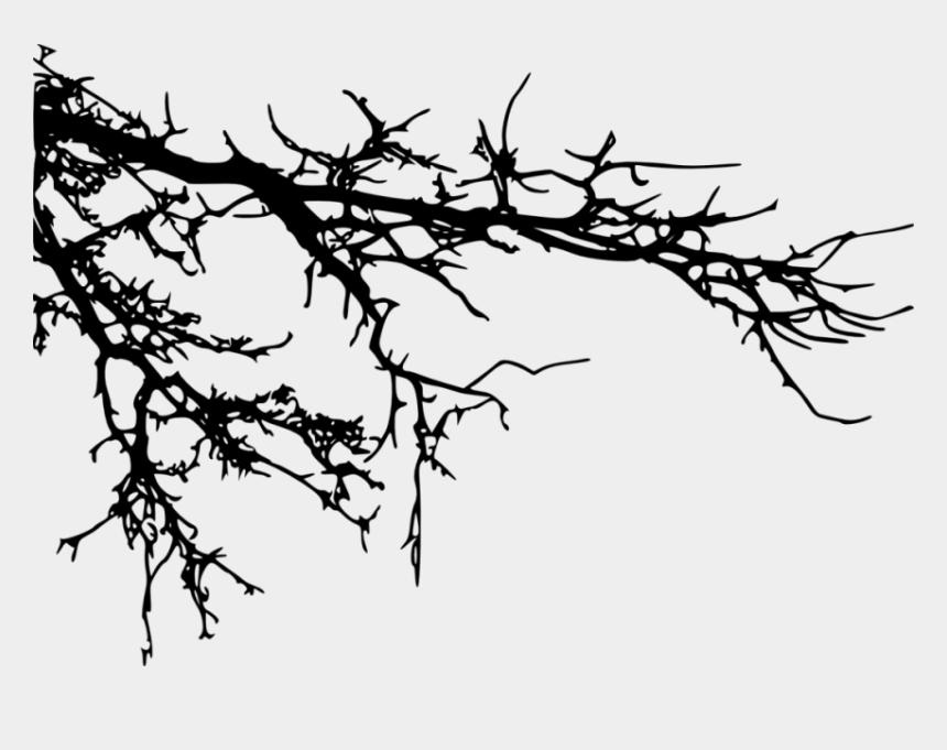 tree branch clipart black and white, Cartoons - Tree Branches Silhouette Png