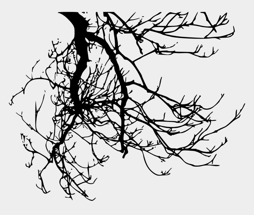 tree branch clipart black and white, Cartoons - Silhouette Tree Branch - Tree Branches Transparent Background