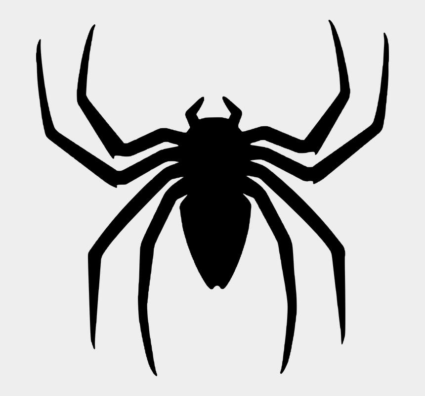halloween spider web clipart, Cartoons - Spider, Silhouette, Halloween - Картинки Пауков На Хэллоуин