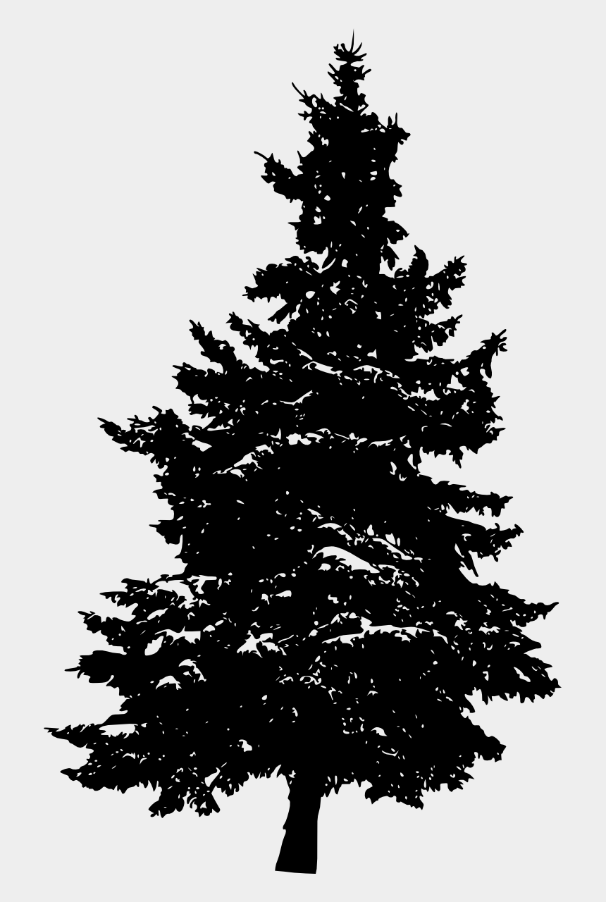 pine trees clipart black and white, Cartoons - White Pine Tree White Silhouette Png - Pine Trees Silhouette Png