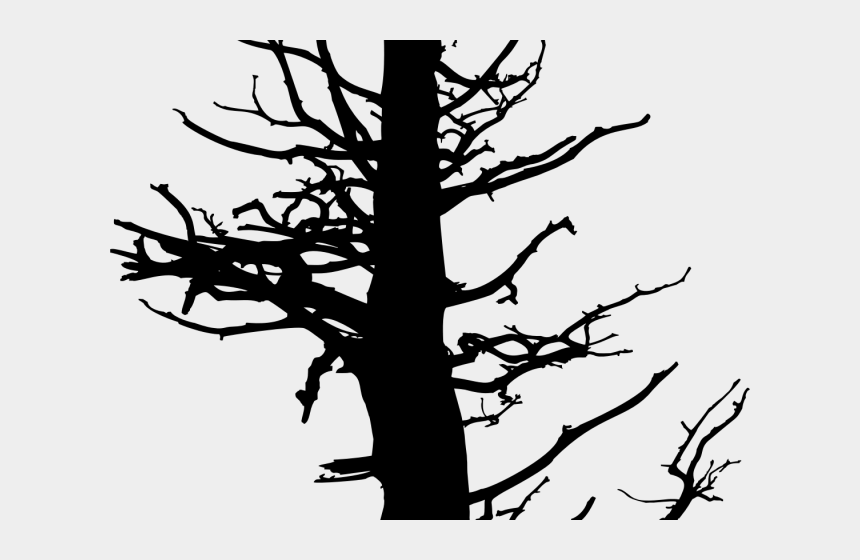 pine trees clipart black and white, Cartoons - Pine Tree Clipart Drawn - Dead Pine Tree Drawing